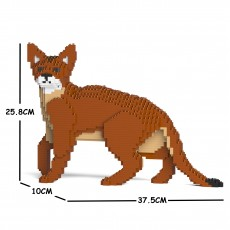 Abyssinian Cat 01S