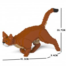 Abyssinian Cat 03S