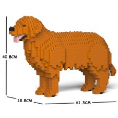 Golden Retriever 01C-M01