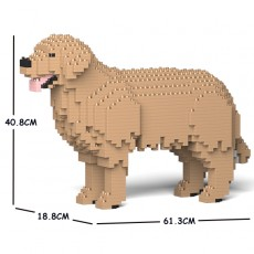 Golden Retriever 01C-M04