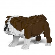 English Bulldog (3)