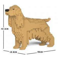 English Cocker Spaniel 01C-M01