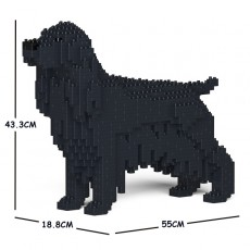 English Cocker Spaniel 01C-M02