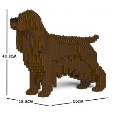 English Cocker Spaniel 01C-M04