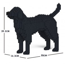 Labrador Retriever 01C-M03
