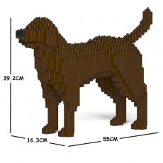 Labrador Retriever 01C-M05
