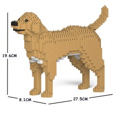 Labrador Retriever 01S-M04