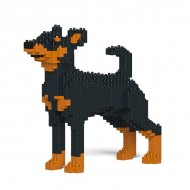 Miniature Pinscher  (2)