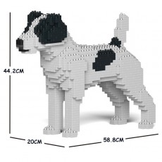 Jack Russell Terrier 01C-M02