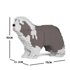 Bearded Collie 01C-M02