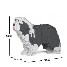 Bearded Collie 01C-M03