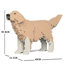 Golden Retriever 02C-M01