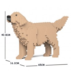 Golden Retriever 02C-M03