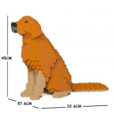 Golden Retriever 03C-M02