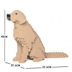 Golden Retriever 03C-M03