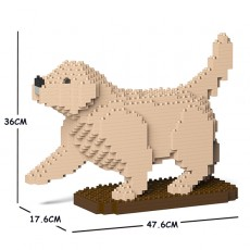 Golden Retriever 05C-M02