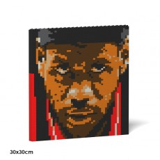 LeBron James Brick Painting 01S