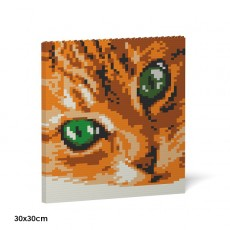 Cat Eyes Brick Painting 01S-M01