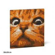 Cat Eyes Brick Painting 02S-M01