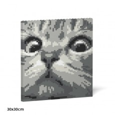 Cat Eyes Brick Painting 02S-M02