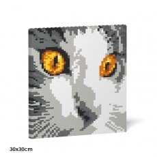 Cat Eyes Brick Painting 03S