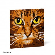 Cat Eyes Brick Paintings (7)