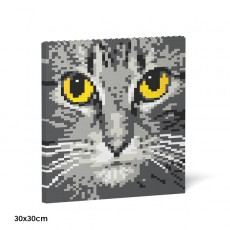 Cat Eyes Brick Painting 04S-M02
