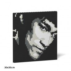 Brick Painting-Bruce Lee 01S