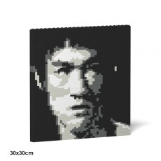 Brick Painting-Bruce Lee 03S