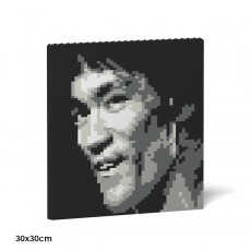 Brick Painting-Bruce Lee 04S
