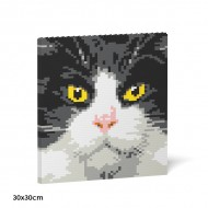 Tuxedo Cat Brick Paintings (2)
